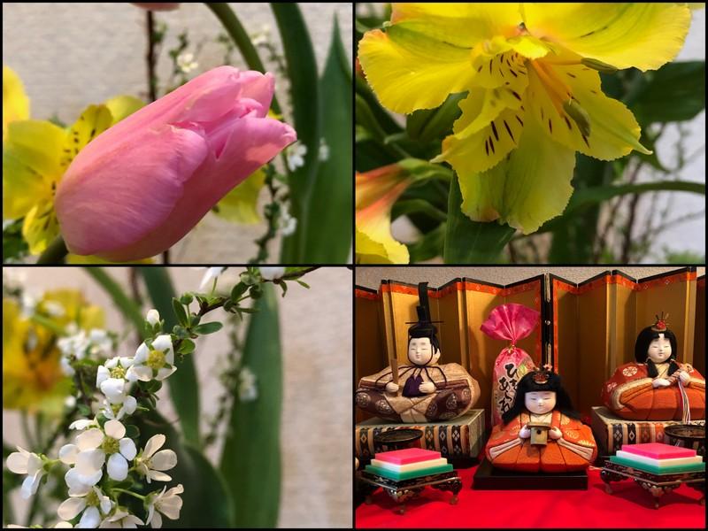 お雛様と春の花
