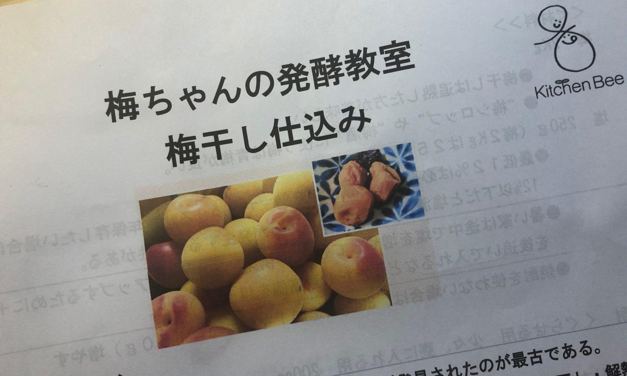 梅ちゃんの発酵教室